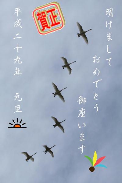 0101新年.JPG