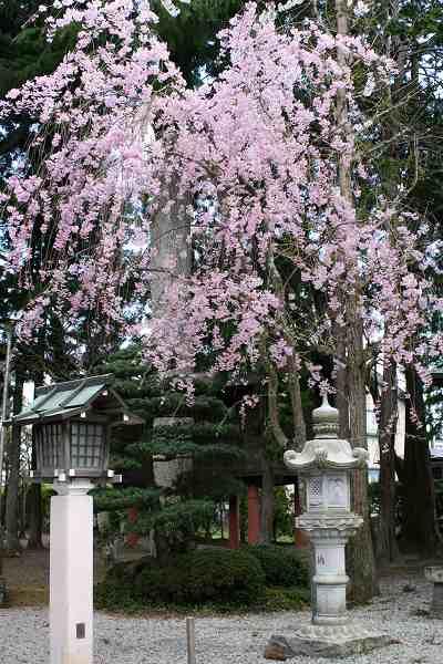 0424竹駒稲荷4.jpg