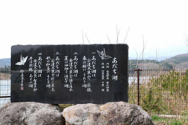 0428桜2.jpg