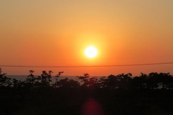 0511伊良湖へ3.jpg