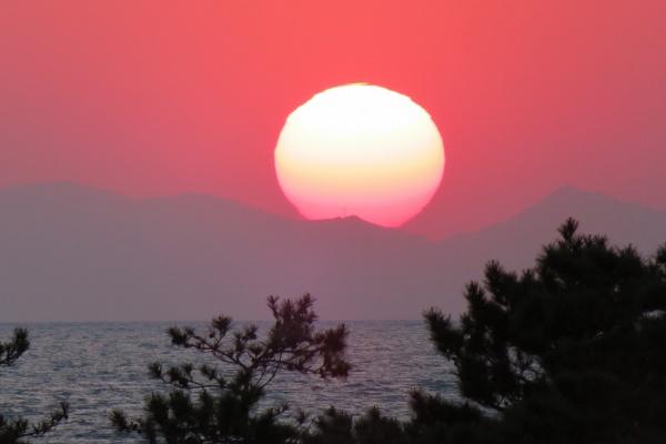 0511伊良湖へ4.jpg