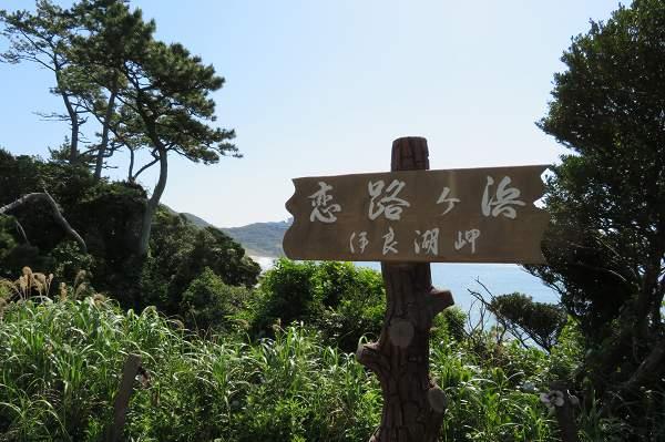 0515伊良湖岬02.jpg